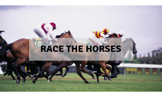 Race the horses activity
